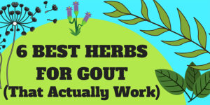 6 Best Herbs For Gout (That Actually Work)
