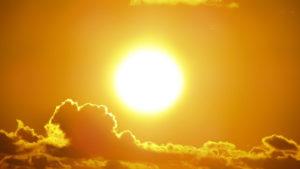 sunlight provides vitamin d