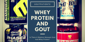 whey protein and gout