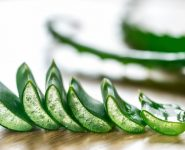 Gout And Aloe Vera - Should I Use It For Pain Relief During The Attack?