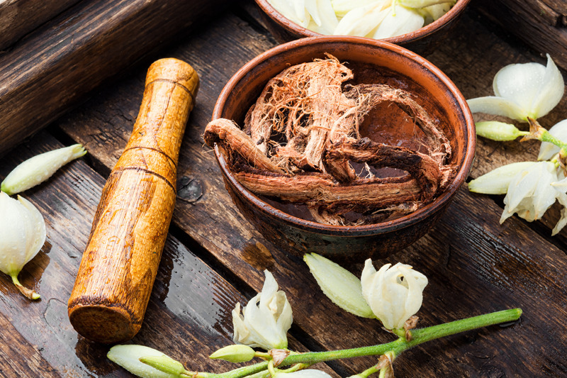 yucca herb and gout