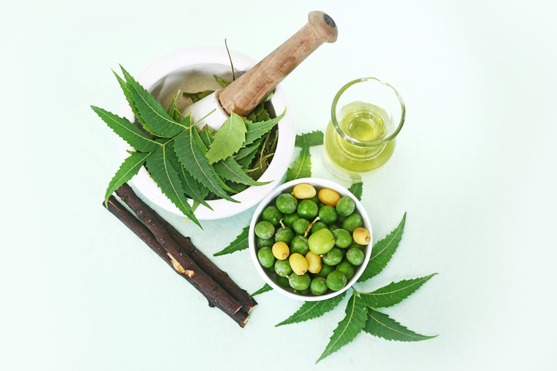 ayurvedic medicine and gout