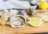 oysters and gout