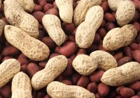 peanuts and gout