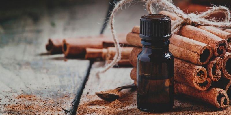 Chinese cinnamon essential oil