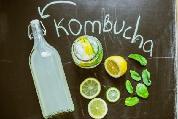 kombucha and gout