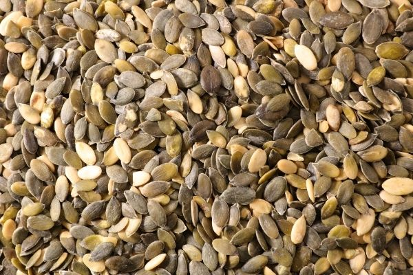 seeds and gout
