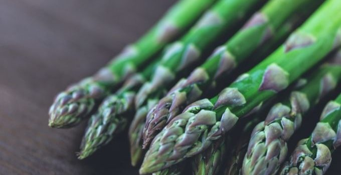 asparagus and gout