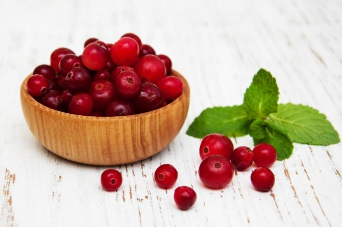 cranberries and gout